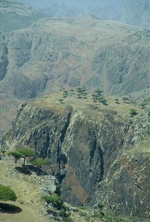 Фото  №3. Йемен, Hadramaut, Unnamed Road