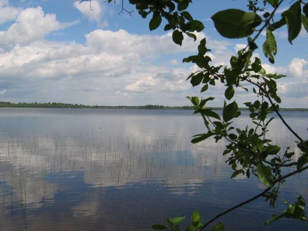 новгородская рыбалка озеро великое