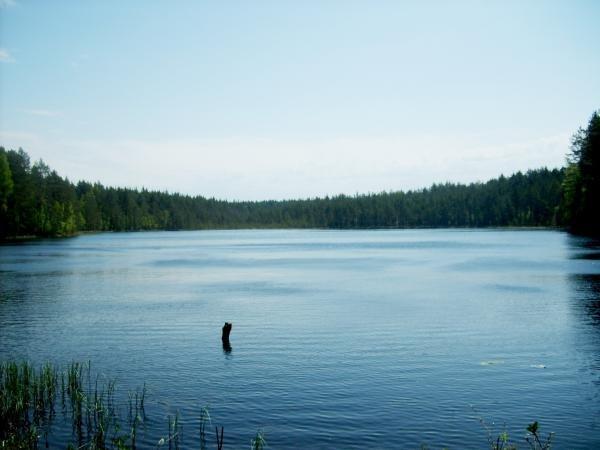 большой олений пруд рыбалка
