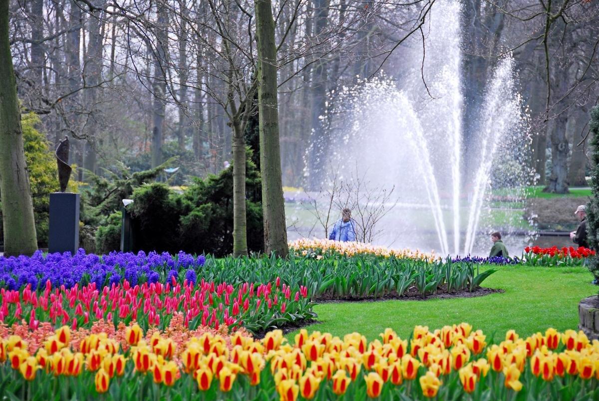 Фото Королевский парк цветов. Нидерланды, Zuid-Holland, Lisse, Stationsweg, 164
