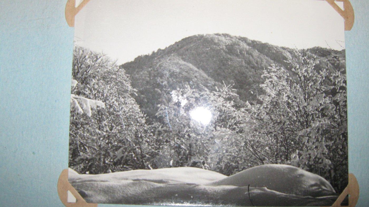 Фото отметка. Грузия, Аджария, Unnamed Road