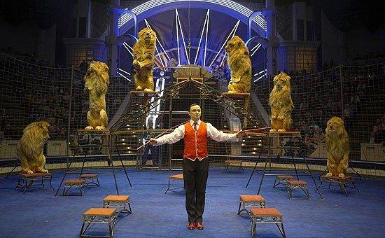 сегодня строитель цирк на вернадского вакансии зачем тратиться, если