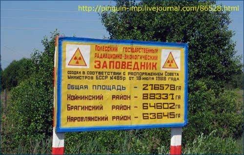 Фото Полесский заповедник. Беларусь, Гомельская область
