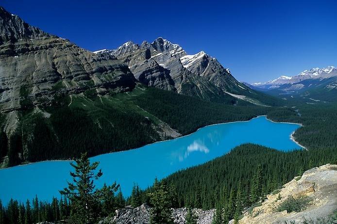 Фото Озеро Пейто. Канада, Альберта, Исфилдс-Паркуэй