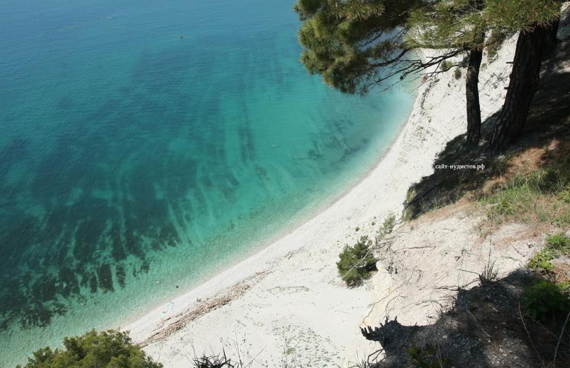 Где на Черном море чище вода