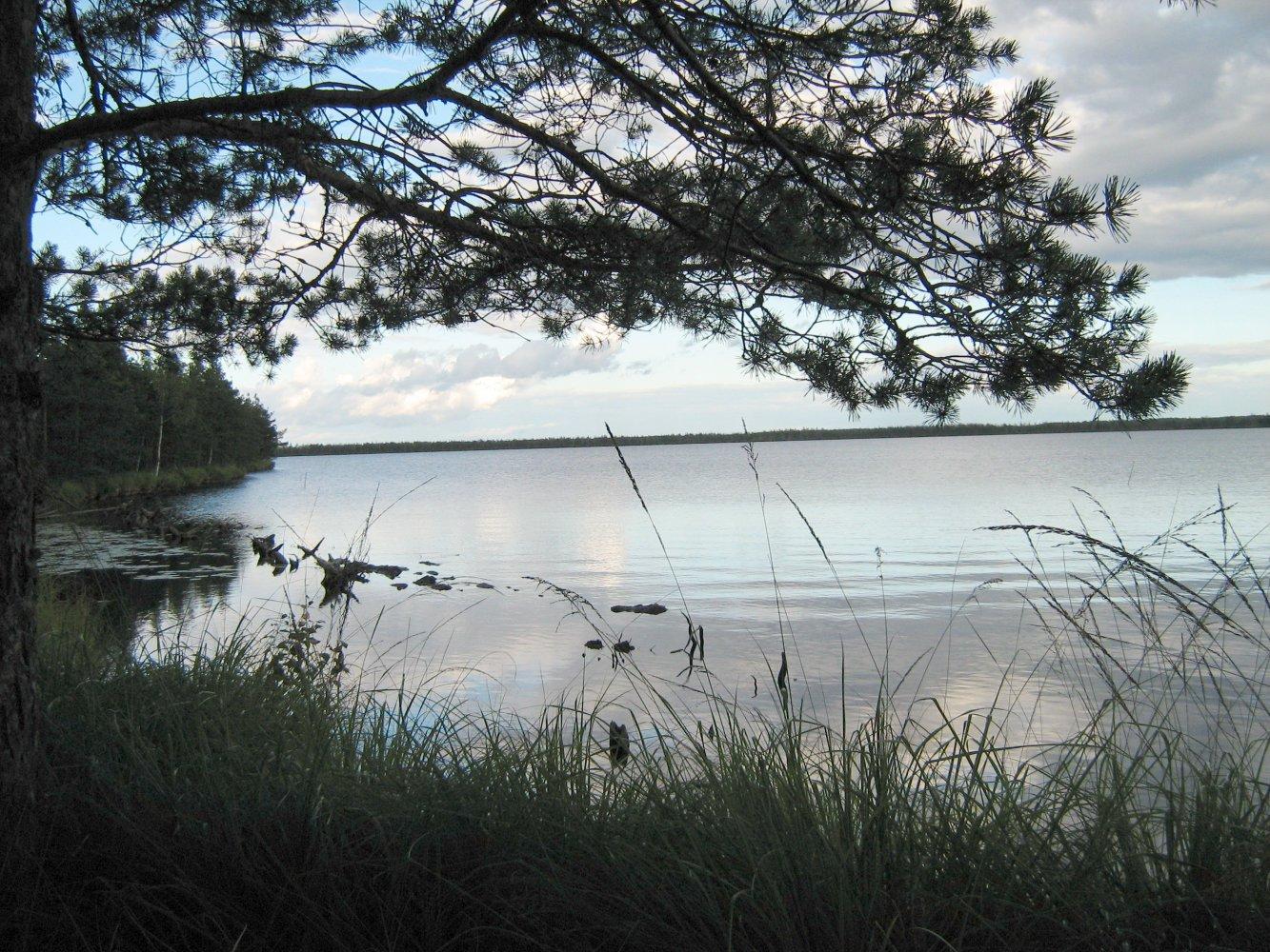 рыбалка в калининском районе тверской области