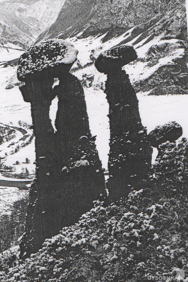 Фото Каменные грибы. Россия, Алтай Републиц