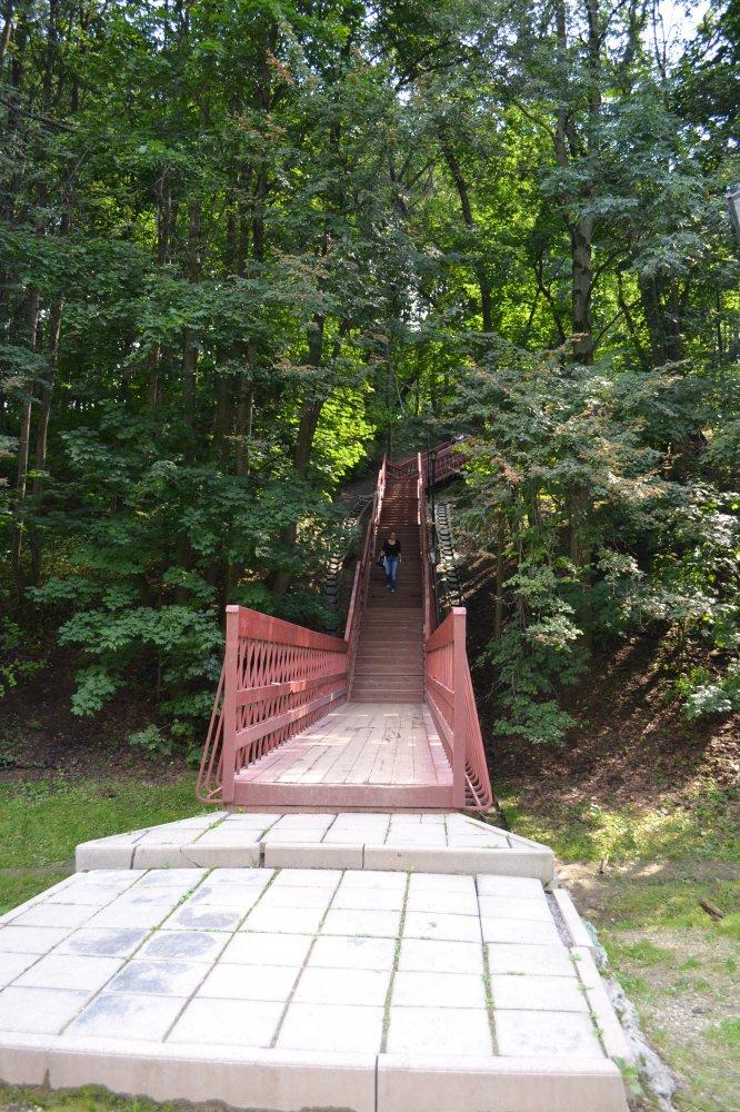 Лестница к озеру своими руками 22
