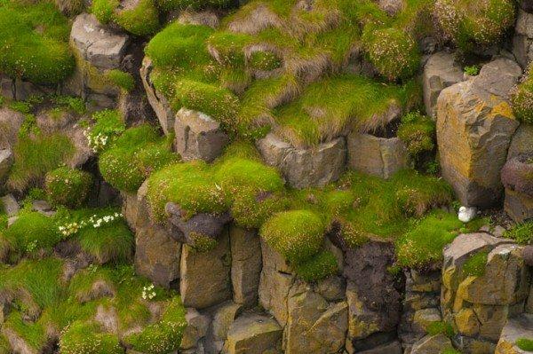 Фото Гебридские острова. Великобритания, Glendale, Waterstein, 1